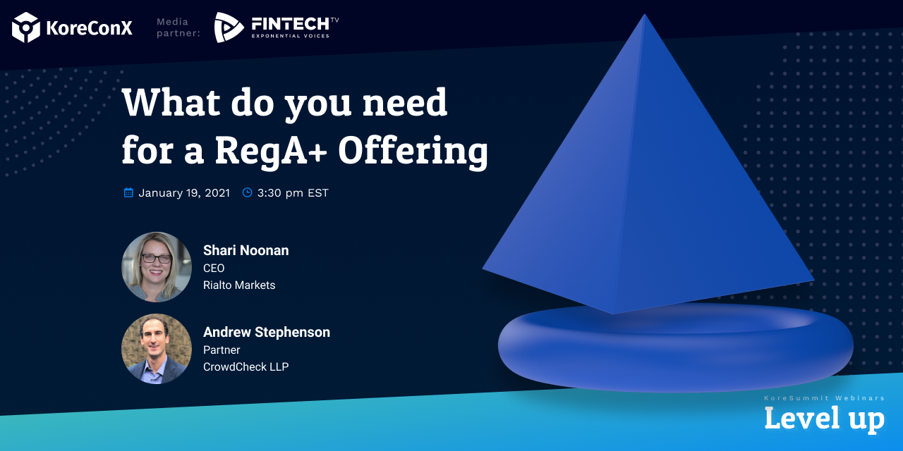 What do you need for a RegA+ Offering